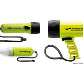 Princeton U.S.A. torches